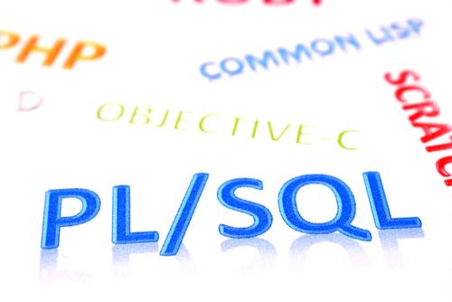 【PL/SQLのフリーランス求人・案件情報】開発単価や仕事内容、将来性はどうか?